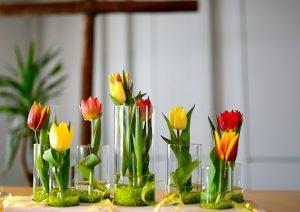 Tulpen Tischschmuck